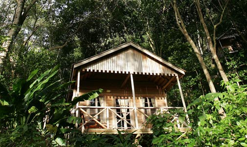 jungle-bay-resort, Caribbean, Dominica, Pt. Mulatre, Jungle Bay, resort, spa, luxury, lodge, eco, award, organic, sustainable, rainforest, ocean, accommodation